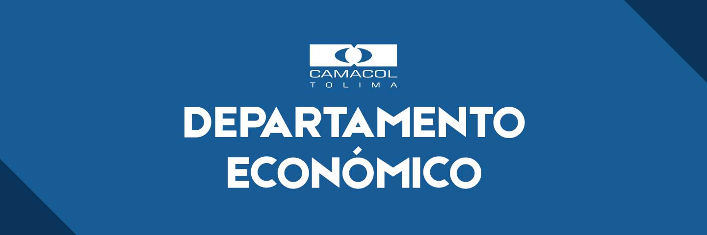 estudios-camacol-tolima